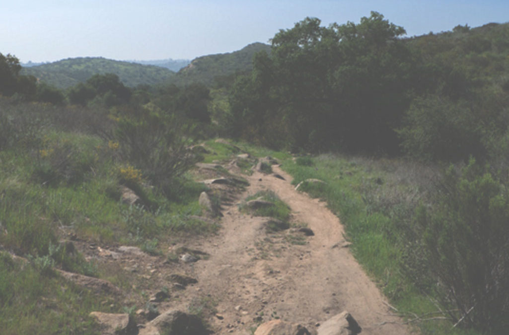 Mountain Bike Mission Trails